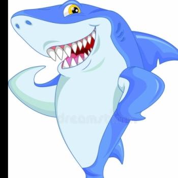 Tubarãozinho do mercado