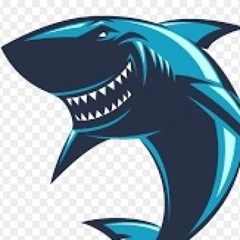 Tubarão SQN